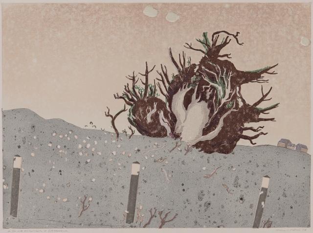 Eine riesige Wurzel wächst in grauer Landschaft